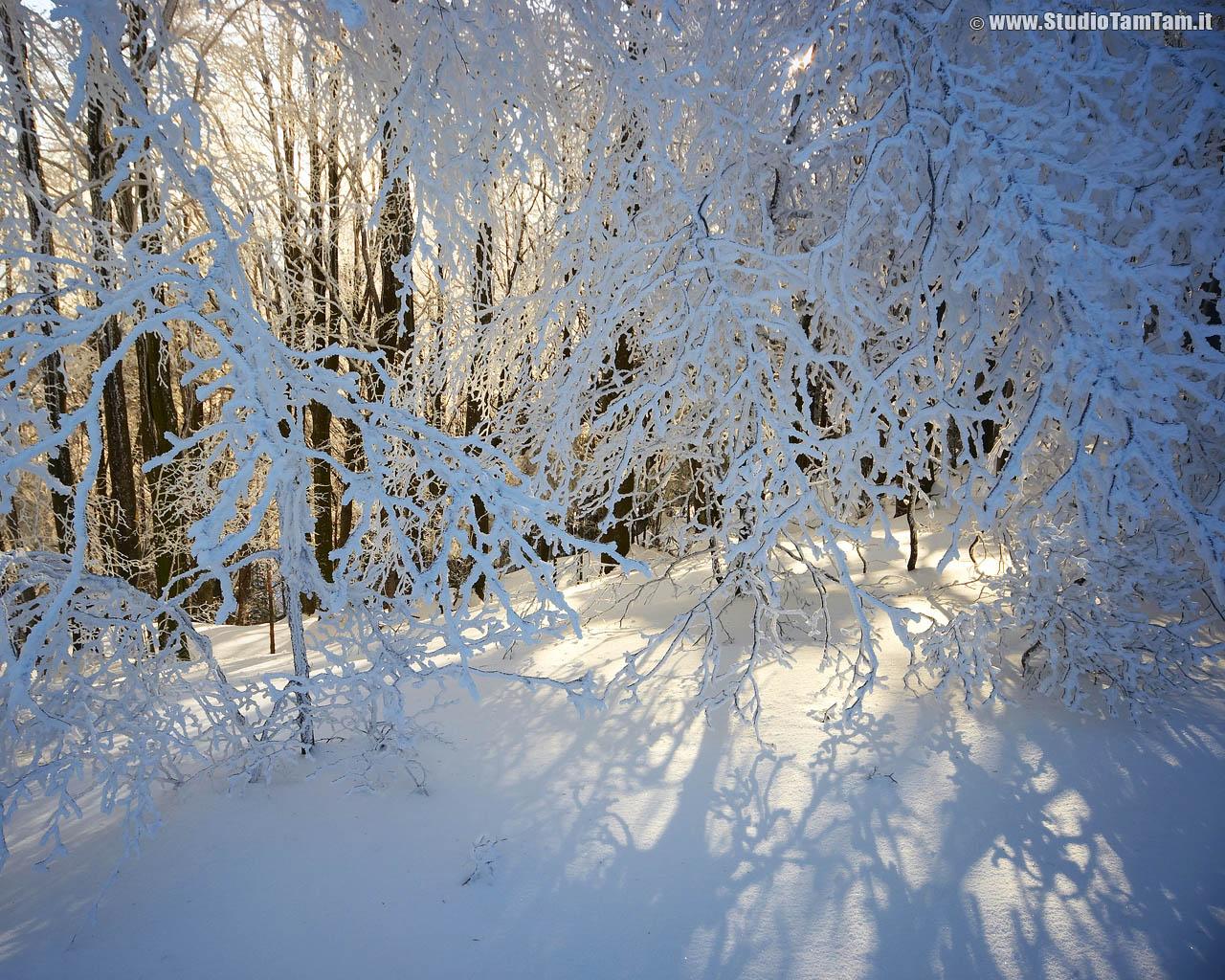 Pin sfondi desktop inverno hd baita tra la neve e foto for Immagini desktop inverno